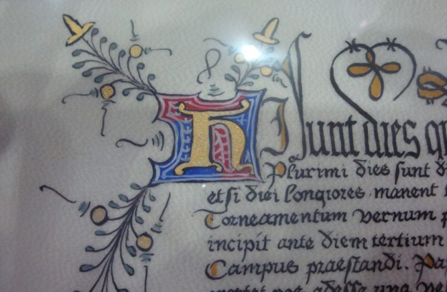 Kieran-MacRae---Calligraphy-&-Illumination-(2)