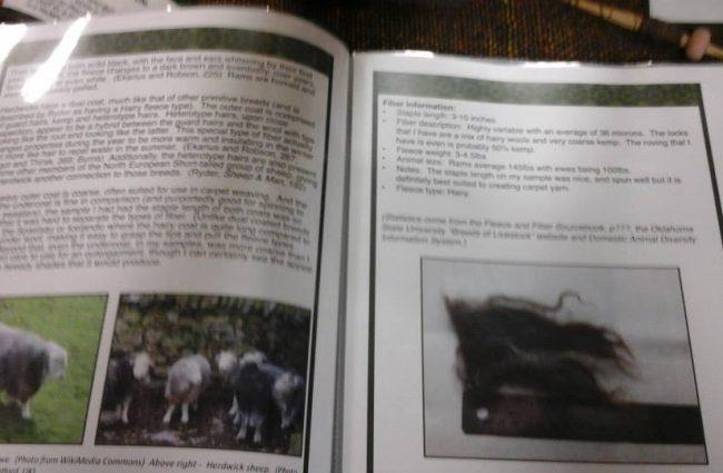 Álfrún ketta - Wools documentation